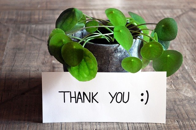 thank-you-3690116_640